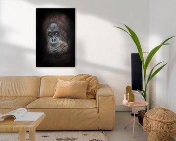 Waarderende sympathieke glimlach half omgedraaid. Kalm en slim orang-oetan gezichts close-up portret van Michael Semenov