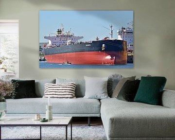 Zeeschip Scorpio en roeiers van Piet Kooistra
