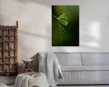 Groen blad in staand formaat van Ulrike Leone