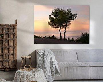 Nuits d'Ibiza sur Marcel Hondeveld