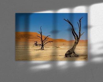 Sossusvlei Namibië (7) van Adelheid Smitt