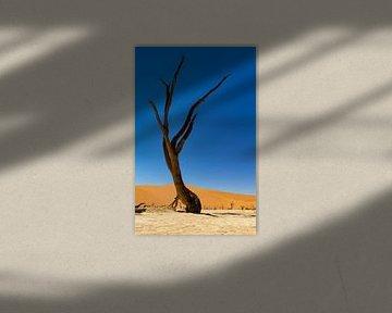 Sossusvlei Namibië (8) van Adelheid Smitt