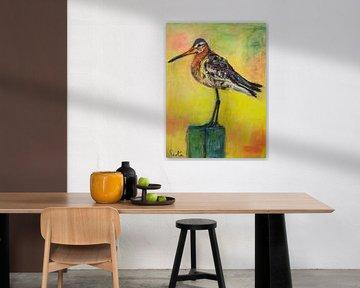 Vogel - die Uferschnepfe (Black-tailed Godwit)