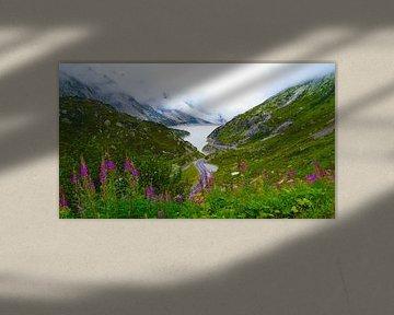 Zwitserland van Fayola Henderikse
