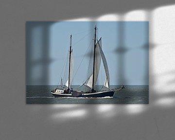 Le navire de la flotte brune Poséidon