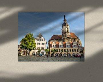Markt van Naumburg van Animaflora PicsStock