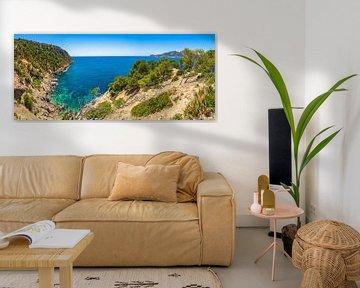 Panoramisch uitzicht op de kust natuur zeegezicht van Sant Elm op Mallorca, Middellandse Zee van Alex Winter