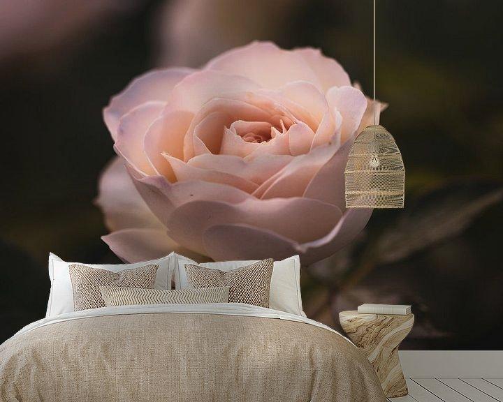 Sfeerimpressie behang: Trotse roos van Lillypix Art