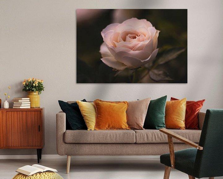 Sfeerimpressie: Trotse roos van Lillypix Art