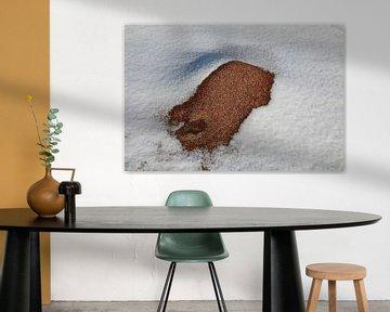 Bisti Badlands in de winter New Mexico, USA van Frank Fichtmüller