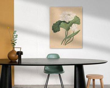 Oost-Indische Lotus,  Ailsa Mellon Bruce