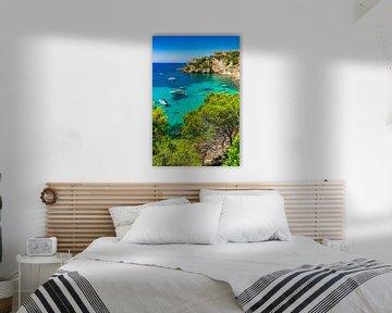 Spanje, luxe boten jachten in de baai van Costa de la Calma, Mallorca eiland, Santa Ponsa van Alex Winter