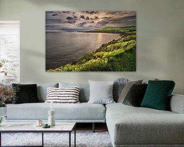 Bloemenzee Kimmeridge Bay van Sander Poppe