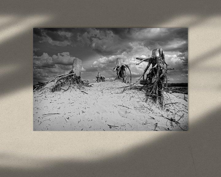 Sfeerimpressie: Dode stronken op zandduin van Fotografie Arthur van Leeuwen
