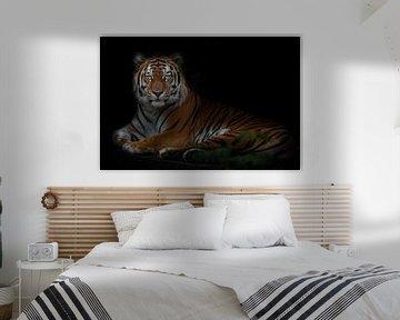 Großer starker Tiger, Amur-Tiger isoliert schwarzer Hintergrund mit grünen Blättern, Symbol der Stär von Michael Semenov