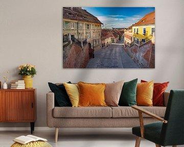 Sibiu van Antwan Janssen