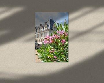 Oleander in Chateaux de Villandry, Frankreich von Christa Stroo fotografie