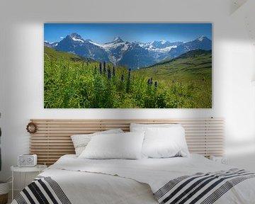 Bergpanorama Berner Oberland van Susanne Bauernfeind
