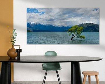 The lonely tree of Wanaka in Nieuw Zeeland als panoramafoto van Ricardo Bouman