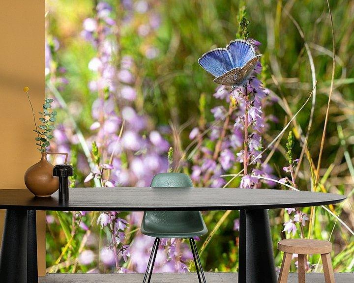 Beispiel fototapete: Schönes Ikarusblau in der Heidelandschaft von Robbert De Reus