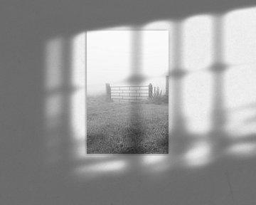 Hek in de mist van Niek Traas