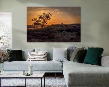Sfeervol landschap zonsondergang van Danielle de Graaf