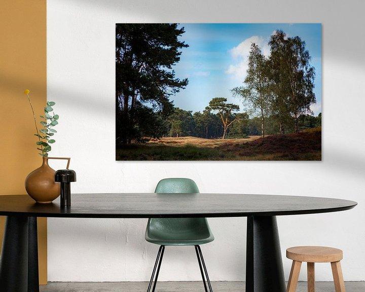Sfeerimpressie: Eenzame boom van Jan van der Knaap