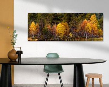 Herbstfarben am See in Norwegen von Johan Zwarthoed