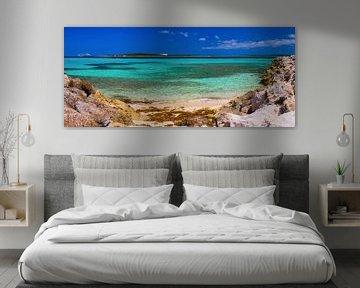 Plage privée de Coco-Cay, Bahamas sur Yevgen Belich