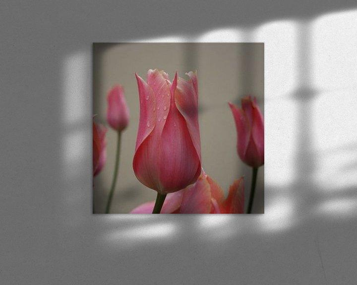 Sfeerimpressie: Tulp upclose van Frederique Richard