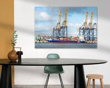 Containerschiff Esperance am Containerterminal im Hafen von Rotterdam von Sjoerd van der Wal