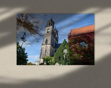 Indian Summer in de Dom van Maagdenburg van t.ART