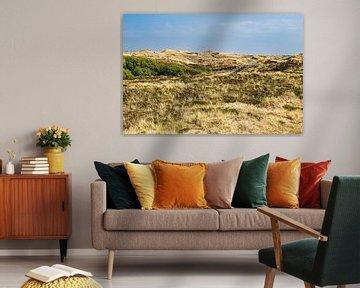 Paysage dans les dunes près de Norddorf sur l'île d'Amrum