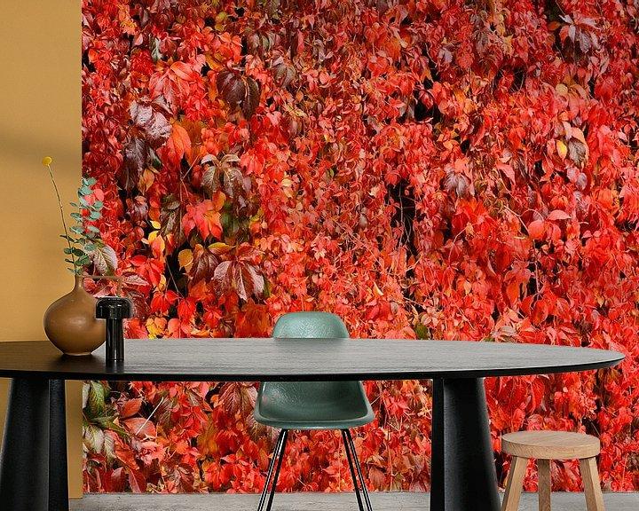 Sfeerimpressie behang: rode wijnbladeren van Gisela Scheffbuch
