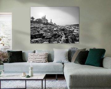 Vuilnis op de oevers van de Yamuna met de Taj Mahal op de achtergrond van Shanti Hesse