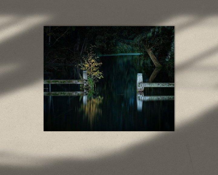 Sfeerimpressie: Het donkere pad van het Hoornse Diep van Ron Buist