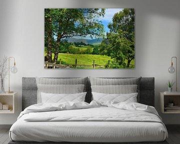 Naddle Valley in het Lake District van Gisela Scheffbuch