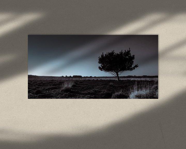 Sfeerimpressie: Groote Heide 4 van Deshamer