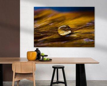 The simplicity of a drop van Ricardo Bouman