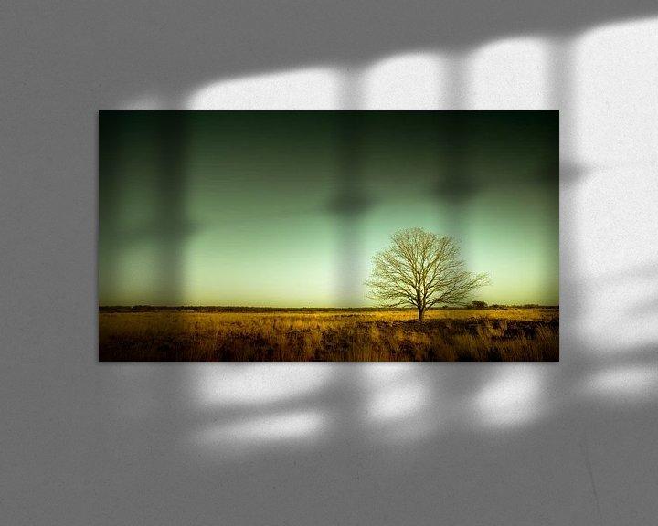 Beispiel: Groote Heide 9 von Deshamer