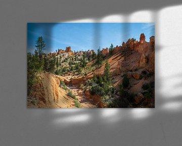 Mossy Cave van Ton Tolboom