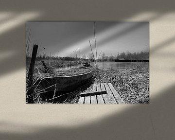 Boot in het riet. von Frank de Ridder