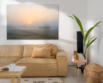 Serene zonsopkomst boven een mistig Beekhuizerzand van Jenco van Zalk