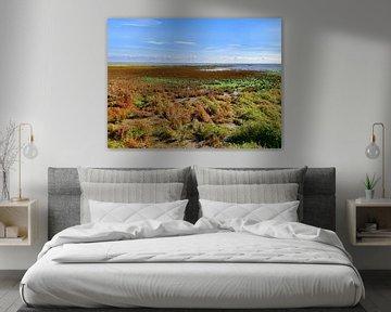 Couleurs d'automne sur le marais salant sur Jan Huneman