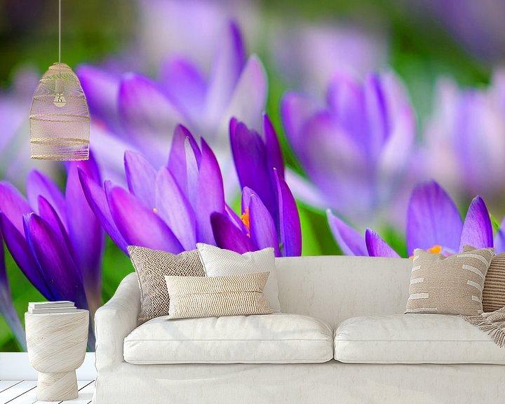 Sfeerimpressie behang: Krokussen  De lente ontwaakt van Jessica Berendsen