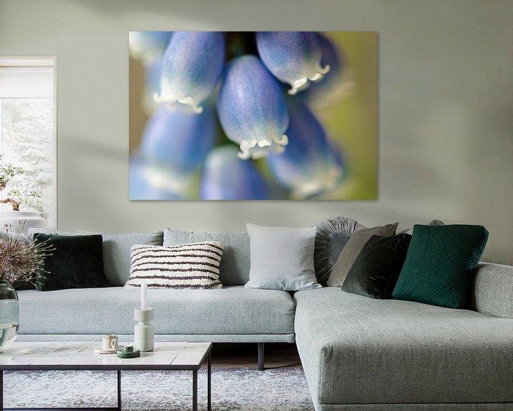 Sfeerimpressie: Blauwe druifjes van Jessica Berendsen