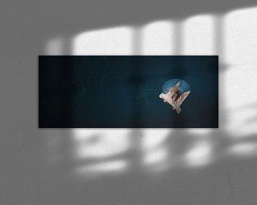 Romp van een containerschip met anker van Jonas Weinitschke