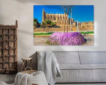 Kathedraal La Seu in Palma de Majorca, Spanje van Alex Winter