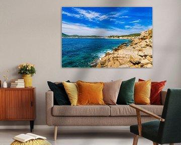 Prachtig uitzicht op de kust Sant Elm op het eiland Mallorca, Spanje van Alex Winter
