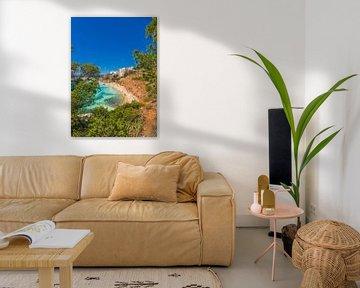 Idyllisch uitzicht op zandstrand Platja de l'Oratori op Mallorca eiland van Alex Winter